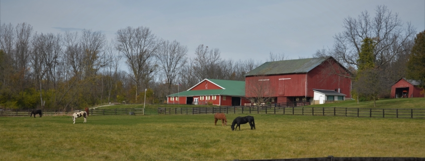 Farm & Equine Insurance Snohomish, WA